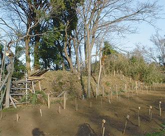 今後調査が進む蟹ヶ谷の前方後円墳