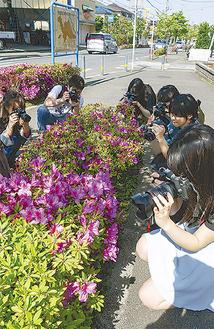 熱心に撮影する学生ら