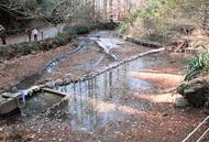 「奥の池」 初の日干し中