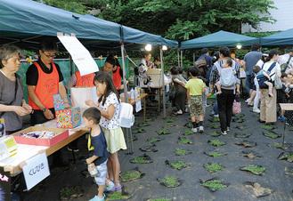 17日、登栄会が夕涼みイベントを開催。地面に植えられているのがクラピア