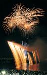 多摩川に注ぐナイアガラ花火