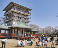 枡形山でピクニック