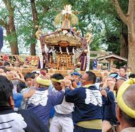 生田の神輿、盛大に