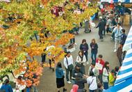 3大学で学園祭
