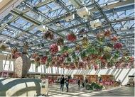 逆境の中新植物園