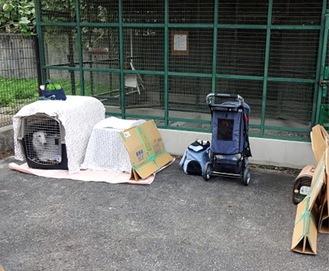 昨年11月の多摩区総合防災訓練で避難するペット=区提供
