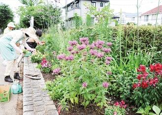 花壇の草取りや水やりを行う同会メンバー=先月29日