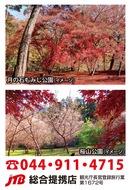 桜山公園 冬桜と月の石もみじ公園の紅葉とみかん狩り