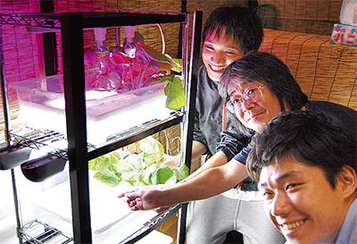 LEDで野菜育て