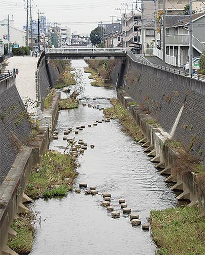 親水整備区間を延長へ