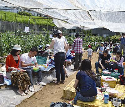 新たな都市農業の形に