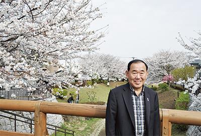 桜まつり初開催へ