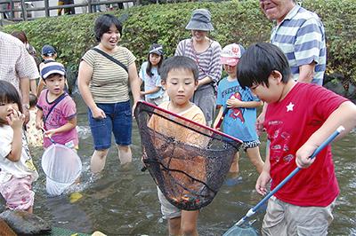 二ヶ領用水で魚取り