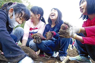 芋掘りに子どもたち歓喜