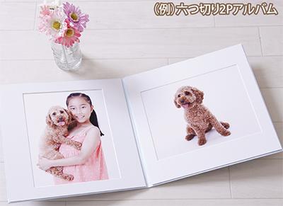 愛犬との家族写真をプロが撮影
