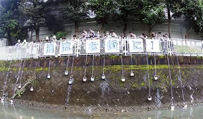 五反田川に錦鯉800匹放流