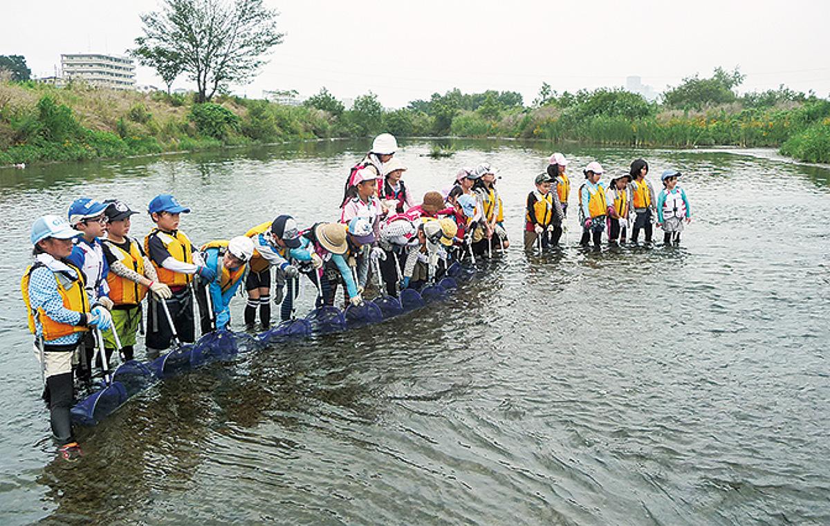 多摩川で生物調査