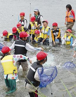 網に魚を追い込む子供たち
