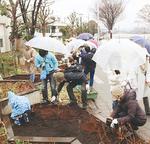 苗木を植樹する参加者