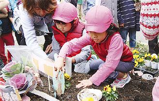 花いっぱいの緑道願い、花を植える園児たち