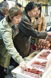 4種類のいちごを食べ比べる参加者ら