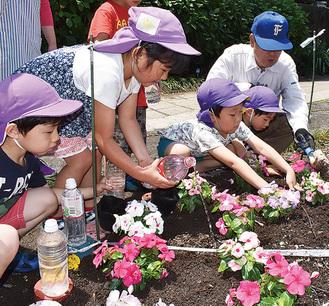 花苗を花壇に植える児童ら