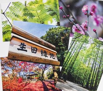 多様な景色を写したポストカード