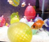 水族館で夏祭り