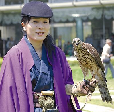 迫力の鷹狩り