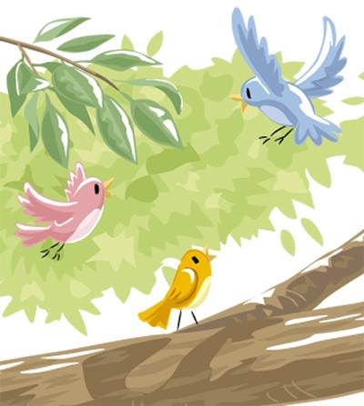 多摩川で野鳥観察