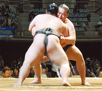 19年ぶりの大相撲に歓声