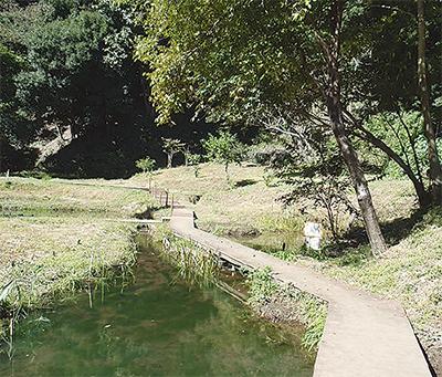 川崎の水辺を知ろう
