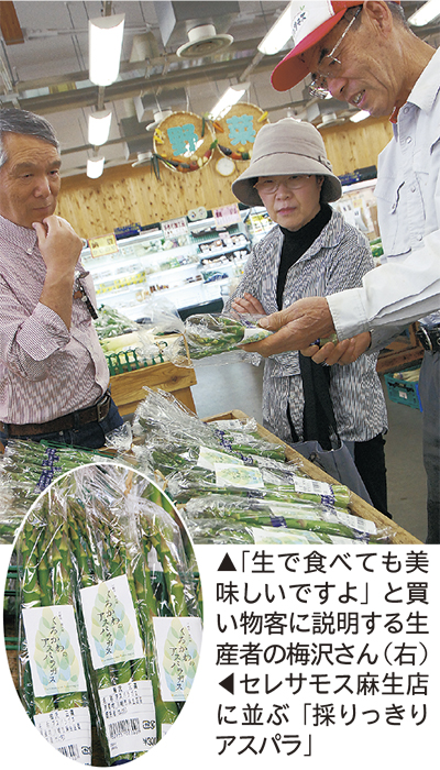 新栽培アスパラが初出荷