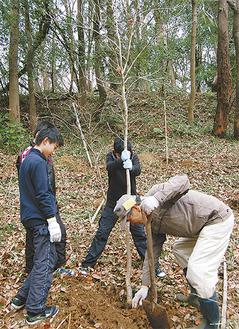 早野聖地公園ボランティア指導のもと、植樹する東柿生小児童