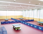 国際大会基準を満たす照度も確保した練習場