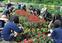 高校生がまちの花壇作り