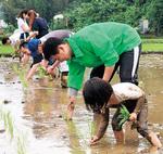 都市農業の活性化へ
