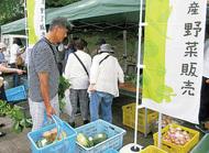 早野産野菜が集合