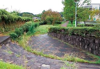 恩廻公園(鶴見川の旧流路にあたる)