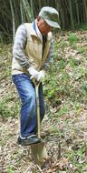 早野で竹林作業を体験