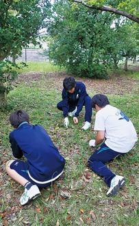 とんび池公園で除草作業