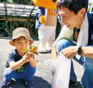 禅寺丸柿 古来手法で収穫
