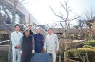 禅寺丸柿を植え替え