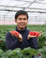 食住近接地で完熟イチゴ