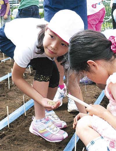 大豆栽培で食育を