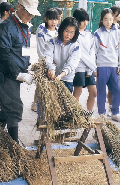 江戸時代の道具で脱穀