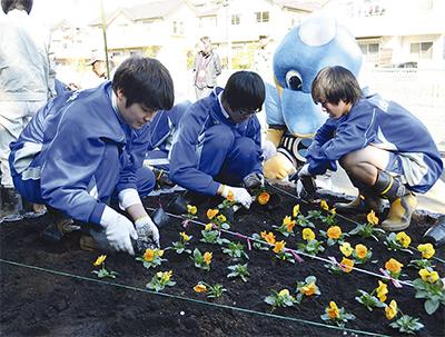 片平川沿いに花壇を設置
