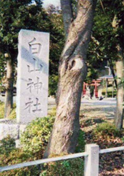 麻生の古道(2) 義貞伝承道