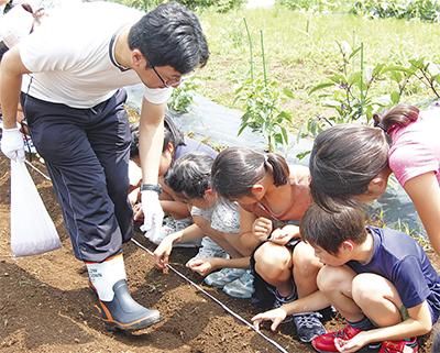 児童に大豆の種まき伝授
