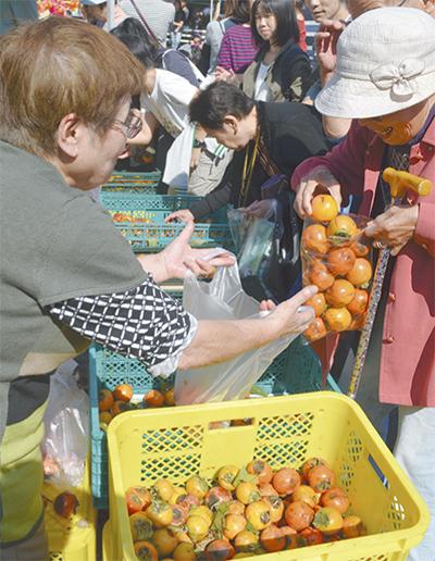禅寺丸柿まつり、大盛況